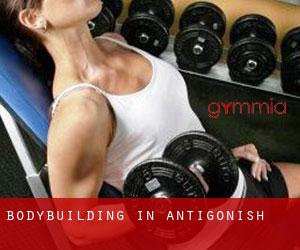 BodyBuilding in Antigonish