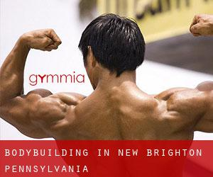 BodyBuilding in New Brighton (Pennsylvania)