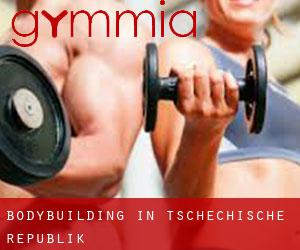 BodyBuilding in Tschechische Republik