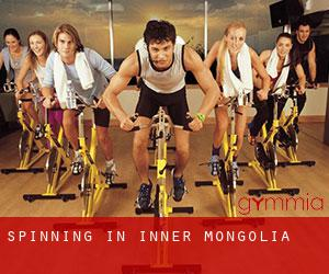 Spinning in Inner Mongolia